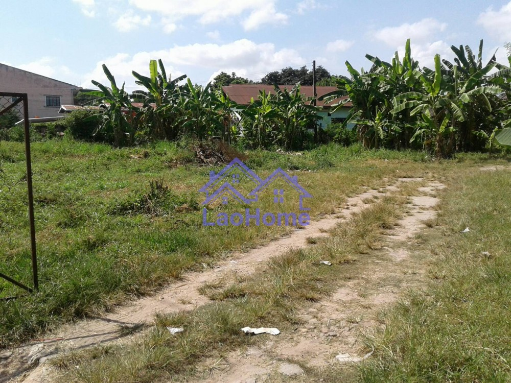ID: 1258 - Land for rent close the road